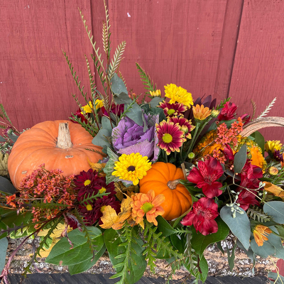 Rustic Harvest from Casey's Garden Shop & Florist, Bloomington Flower Shop