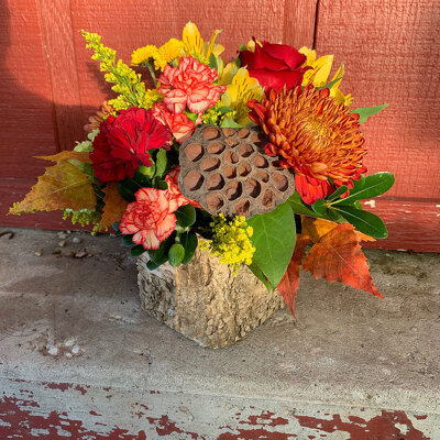 Rustic Autumn from Casey's Garden Shop & Florist, Bloomington Flower Shop
