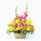 Basketful of Sunshine from Casey's Garden Shop & Florist, Bloomington Flower Shop