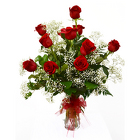 One Dozen Red Roses - Classic from Casey's Garden Shop & Florist, Bloomington Flower Shop