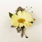 Gerbera Boutonniere from Casey's Garden Shop & Florist, Bloomington Flower Shop